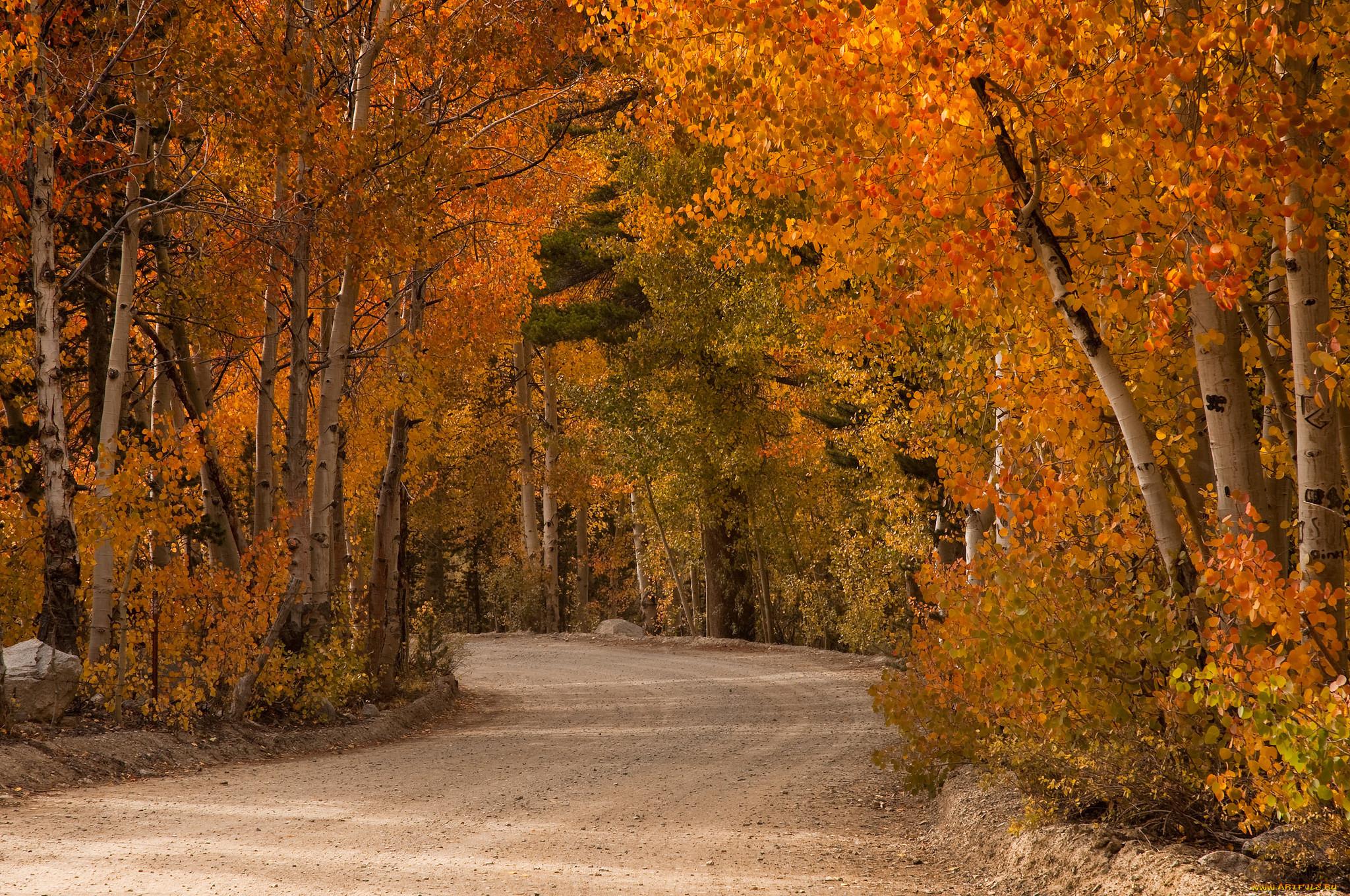 Картинки осень природа сентябрь